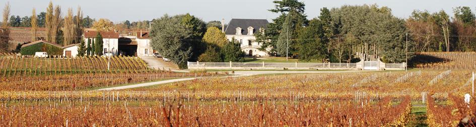 Château Maison Blanche - Vin Bio de Montagne-Saint-Emilion